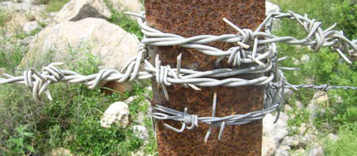 barbed-18421__340