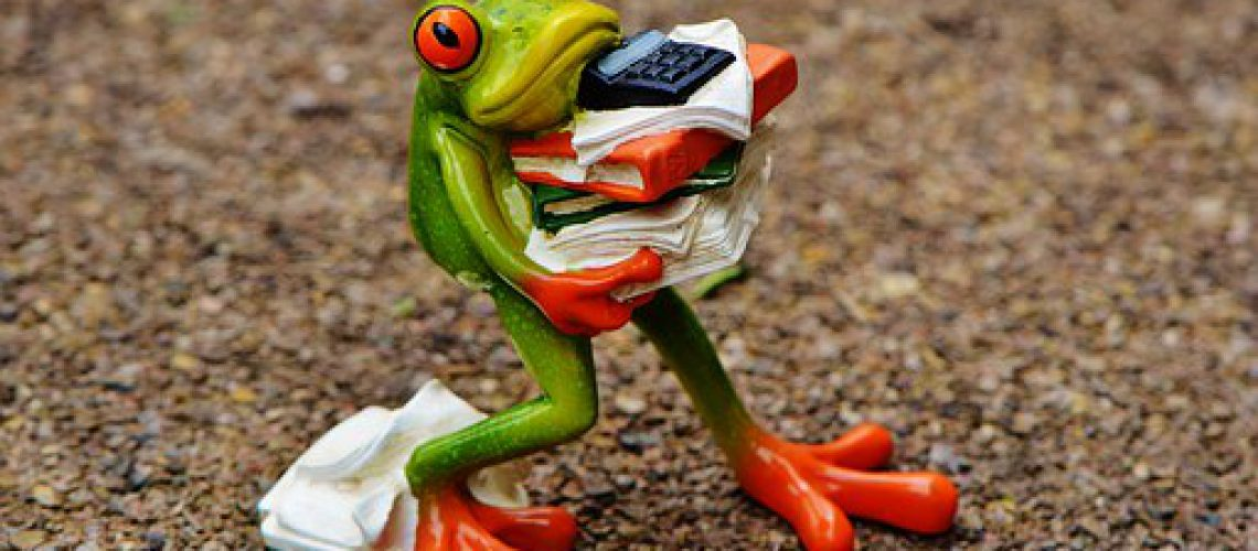 frog-1339892__340
