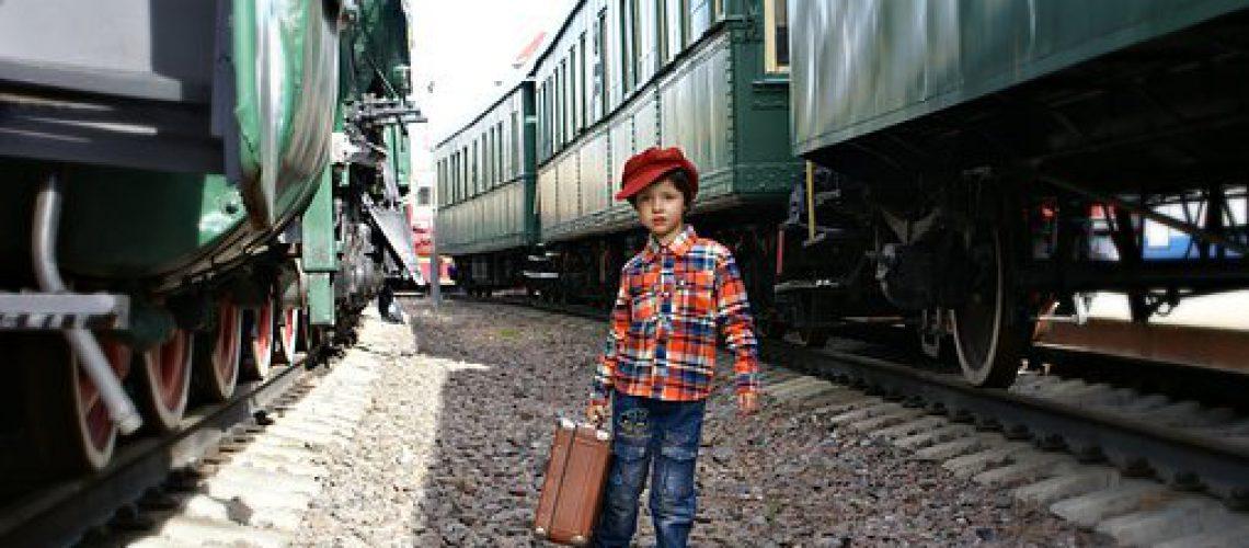 train-3067033__340