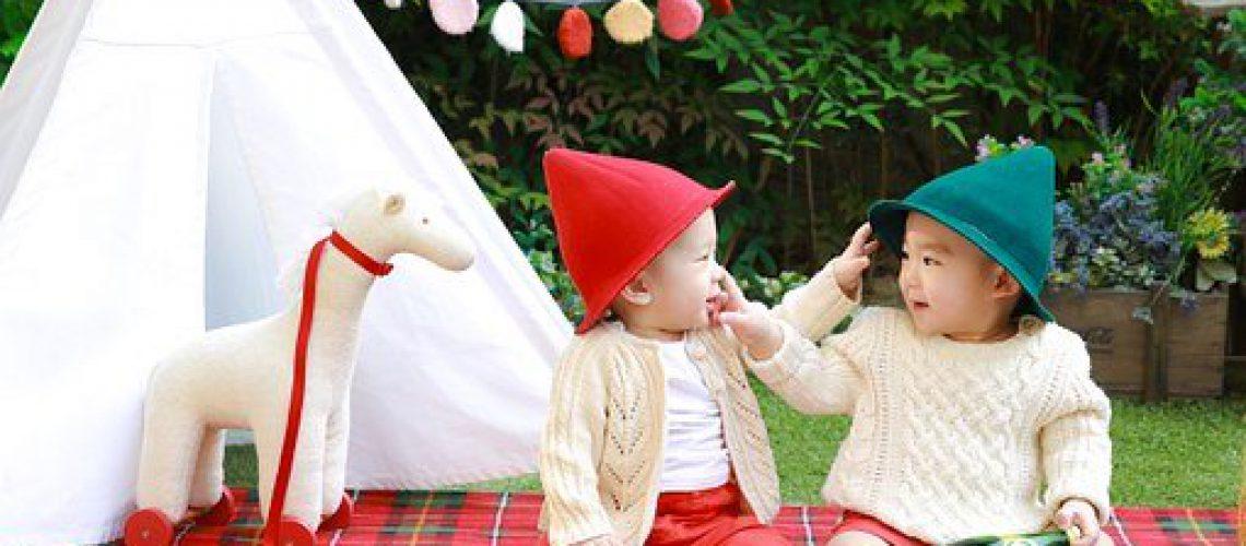 twins-775506__340